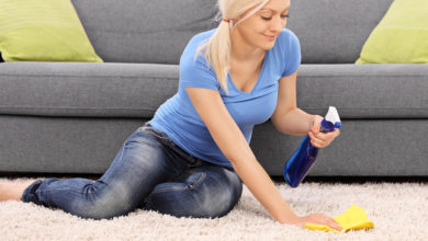 Photo of Why Hire Carpet Cleaning Services