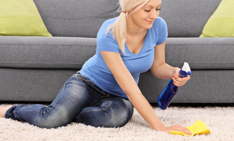 Why Hire Carpet Cleaning Services